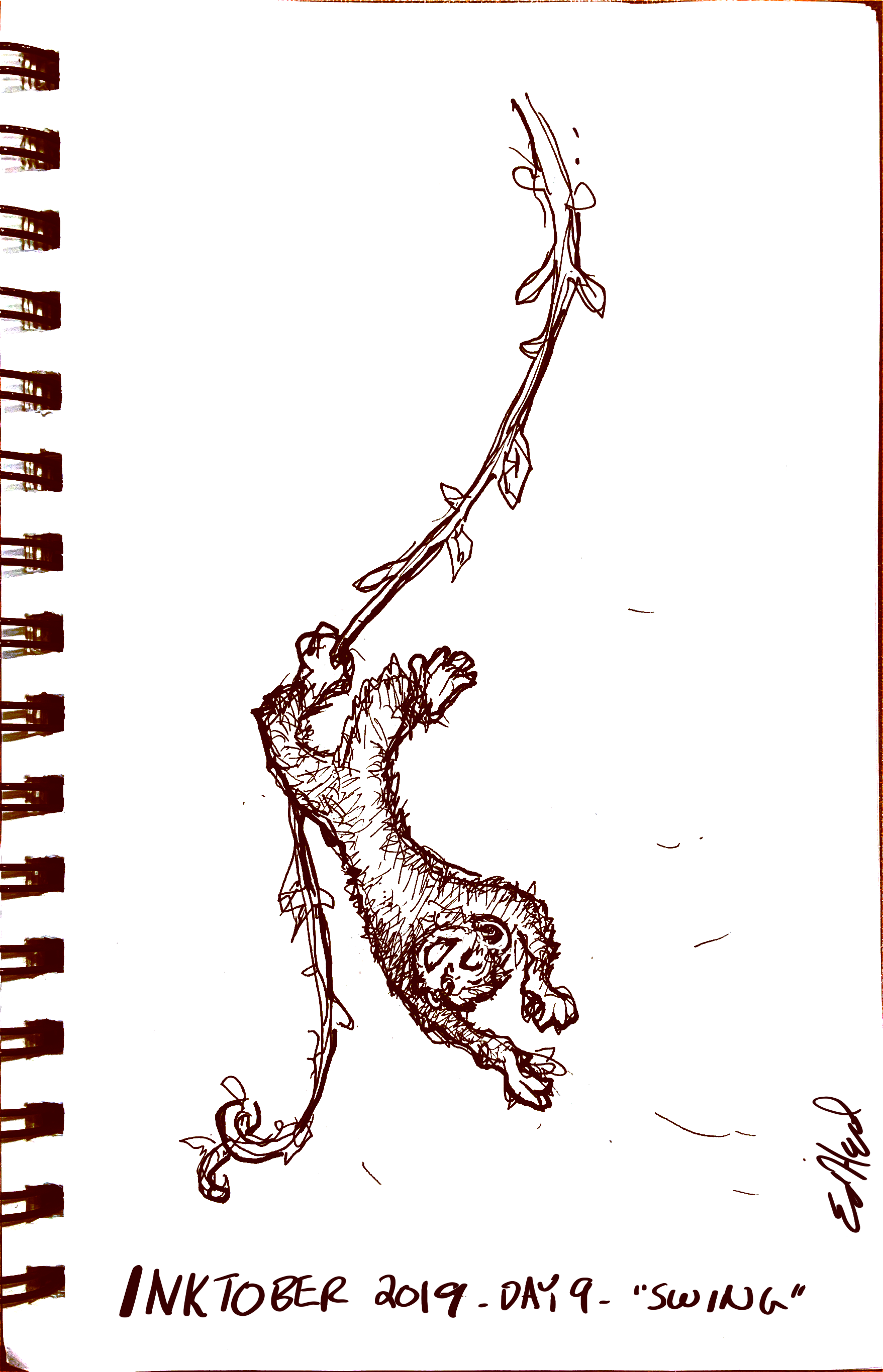 A happy monkey swinging upside down on a vine